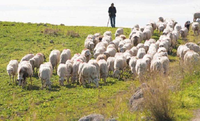 Προστασία Κτηνοτρόφων