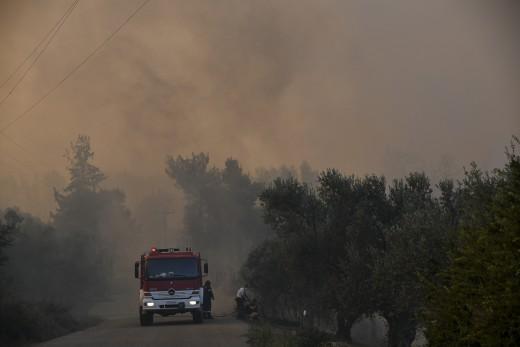 Μέγαρα: Ξέσπασε φωτιά σε δασική έκταση