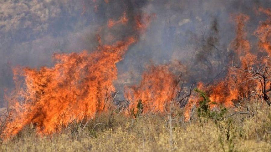 Φωτιά μικρής έκτασης στην Επανομή