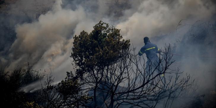 ΝΟΜΟΣ ΦΘΙΩΤΙΔΑΣ: Μεγάλη φωτιά ξέσπασε σε οικισμούς στη Μακρακώμη