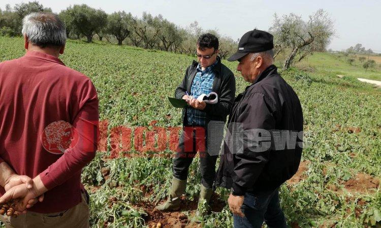 Ημαθία: Καταστροφή καλλιεργειών καταγγέλλει ο αντιπεριφερειάρχης