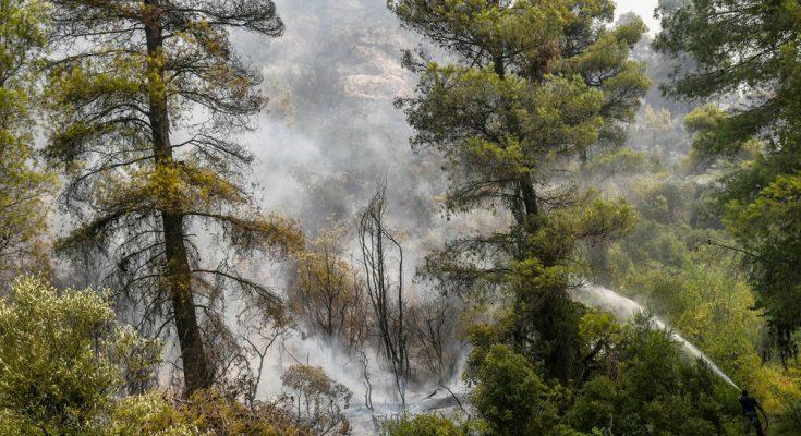 Αστεροσκοπείο: Οι καιρικές συνθήκες και η πρόγνωση της εξάπλωσης στις δασικές πυρκαγιές