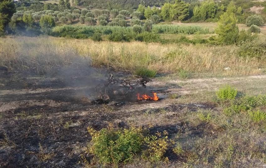 Γουρούνα έγινε παρανάλωμα πυρός