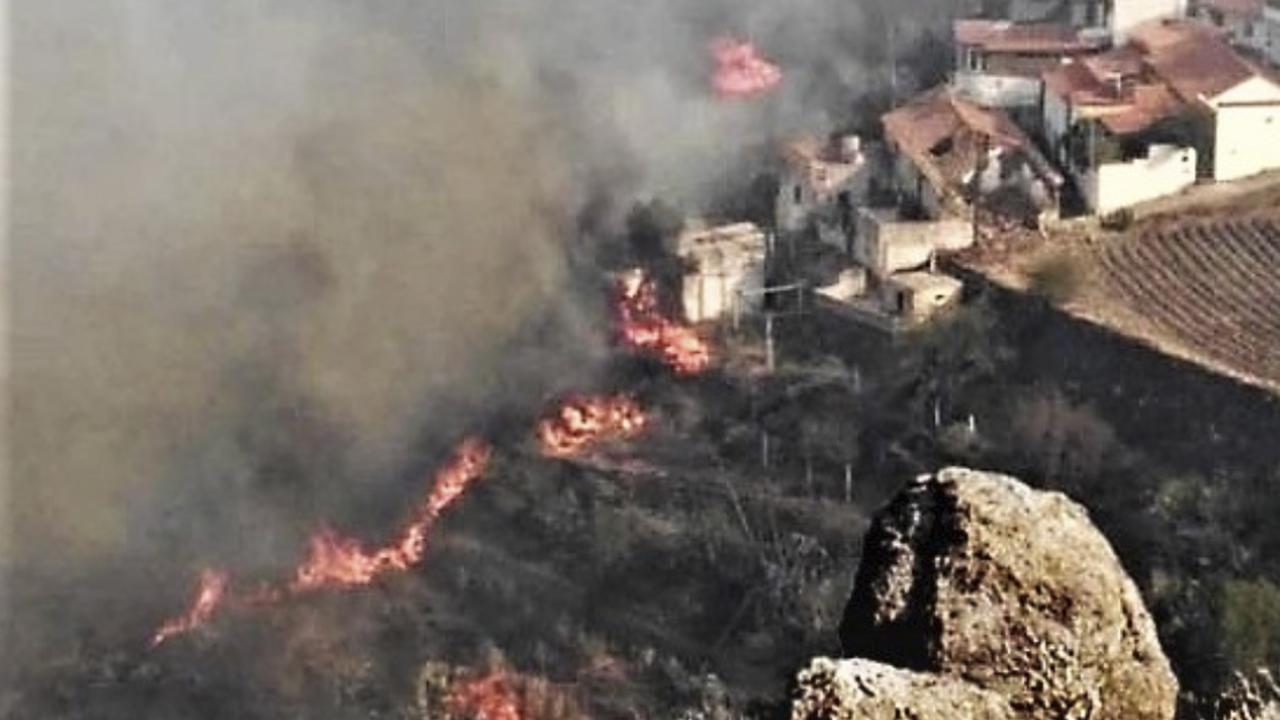Περιβαλλοντική τραγωδία στο Γκραν Κανάρια