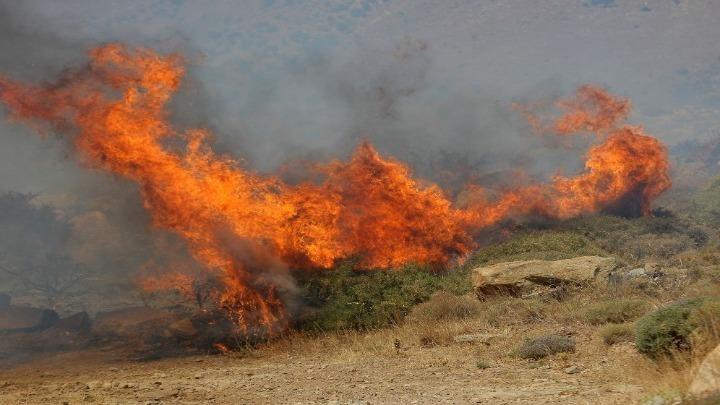 Κομισιόν: Υψηλός κίνδυνος για εκτεταμένες δασικές πυρκαγιές σε όλη την Ευρώπη