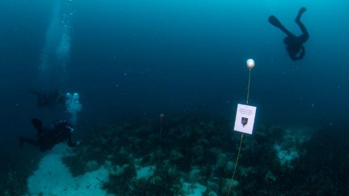 Την 1η Ιουνίου ανοίγει τις πύλες του το πρώτο υποβρύχιο μουσείο της Ελλάδας, στην Αλόννησο