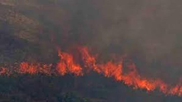 ΕΕ: Copernicus: Η Μεσόγειος έχει εξελιχθεί σε hotspot πυρκαγιών
